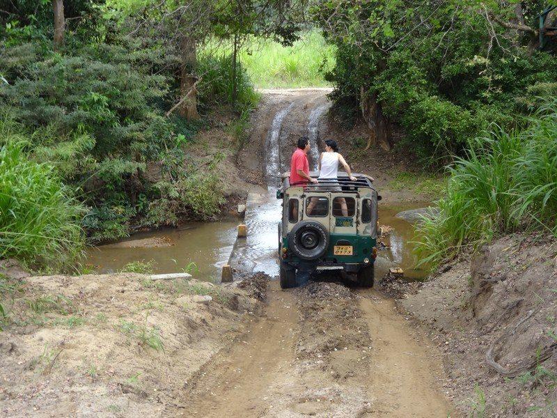 safari-ride-ooty