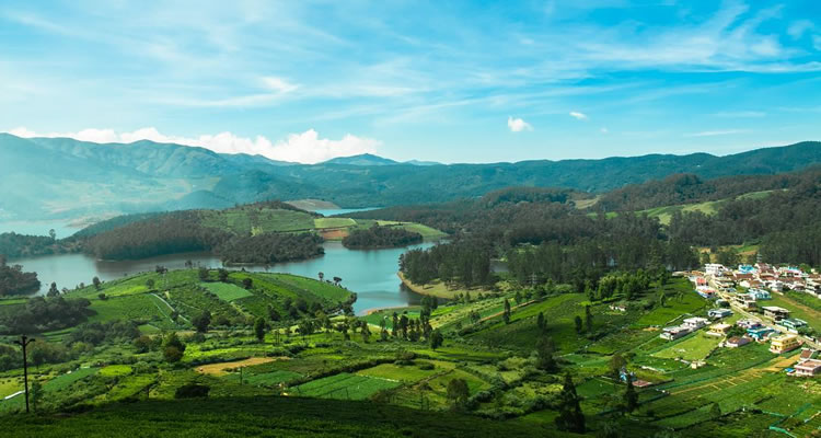 Emerald Lake Honeymoon Place Ooty Tour Packages Tourism